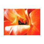 Poised Petals Canvas Prints