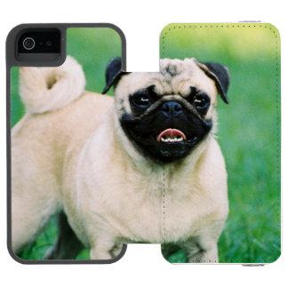 Poised Pug iPhone SE/5/5s Wallet Case