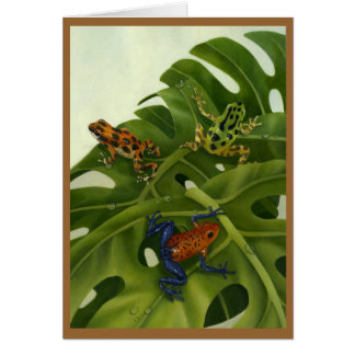 Poison Arrow Frog Card