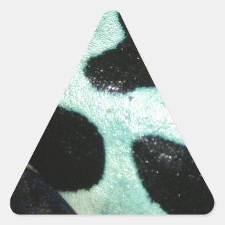 Poison Arrow Frog Triangle Sticker