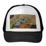 Poison Dart Frog # 1 Hat
