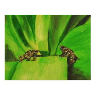 Poison Dart Frog # 2 Postcard