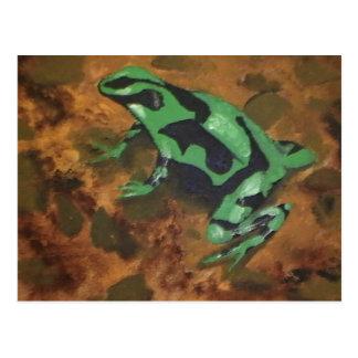 Poison Dart Frog # 5 Postcard