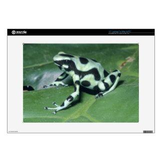 "Poison Dart Frog, (Dendrobates auratus) Cahuita Decals For 15"" Laptops"