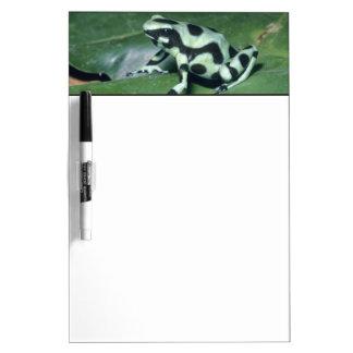 Poison Dart Frog, (Dendrobates auratus) Cahuita Dry-Erase Board