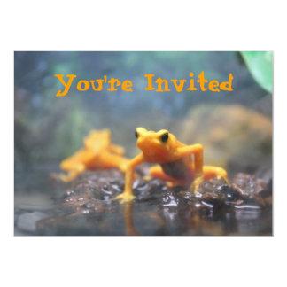 Poison Dart Frog Invitation