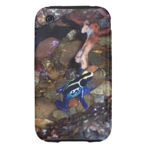 Poison Dart Frog iPhone Case Tough iPhone 3 Covers