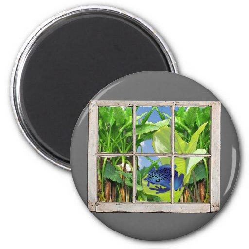 Poison Dart Frog Magnets