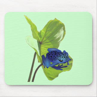 Poison Dart Frog Mousepads