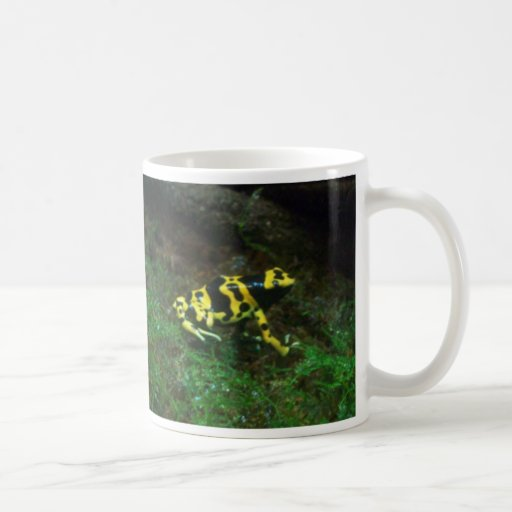 Poison Dart Frog mug