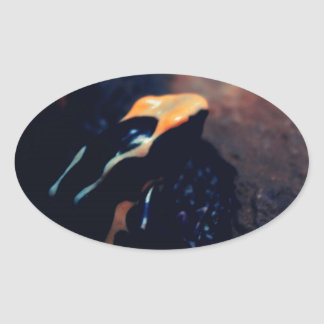 poison dart frog oval sticker