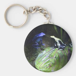 Poison Dart Frogs Keychain