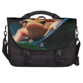 Poison Dart Frogs Laptop Computer Bag