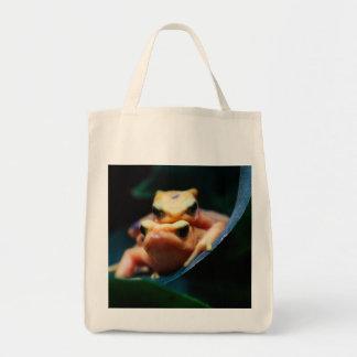 Poison Dart Frogs Wildlife Animal Photo Canvas Bag