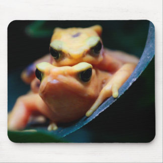 Poison Dart Frogs Wildlife Animal Photo Mouse Pad