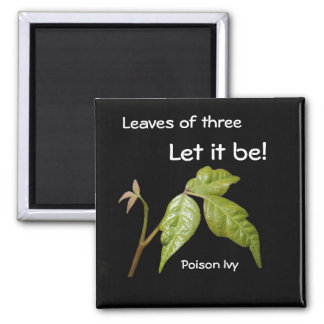 Poison Ivy 2 Inch Square Magnet