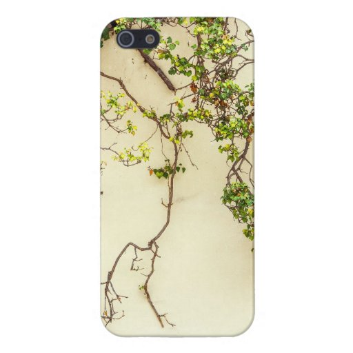 Poison Ivy On A Yellow Wall iPhone 5 Cover