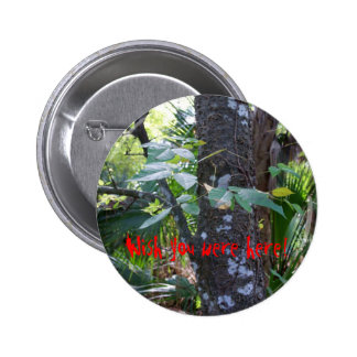 Poison Ivy Pinback Buttons