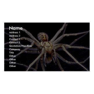 Poisonous menacing recluse spider business card