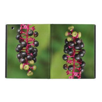 Pokeweed Berries iPad Case