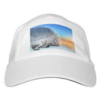 pol headsweats hat