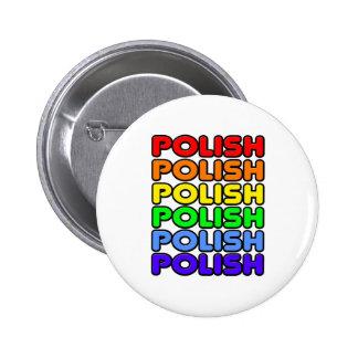 Polaco del arco iris pin