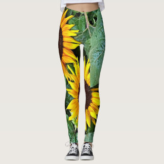 Polainas soleadas del girasol leggings