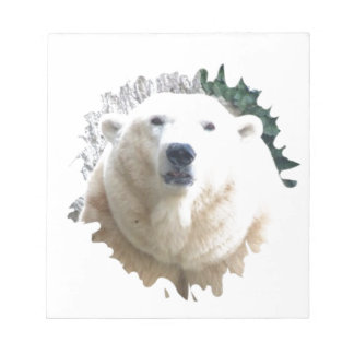 Polar Baer Note Pads