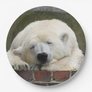Polar_Bear_2015_0301 9 Inch Paper Plate