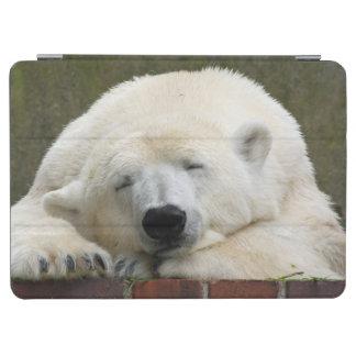 Polar_Bear_2015_0301 iPad Air Cover