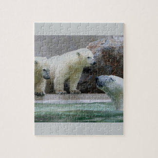 Polar Bear 8x10 Photo Puzzle with Gift Box