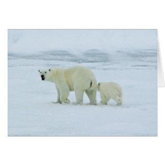 Polar Bear and Cub Card