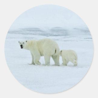 Polar Bear and Cub Classic Round Sticker
