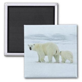 Polar Bear and Cub Magnet