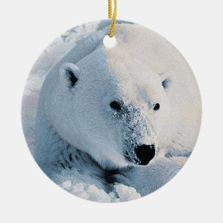 Polar Bear and Snow Ornament