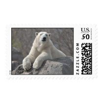 Polar Bear at Ease Postage