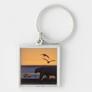 Polar bear at sunrise with glaucous-winged Silver-Colored square keychain