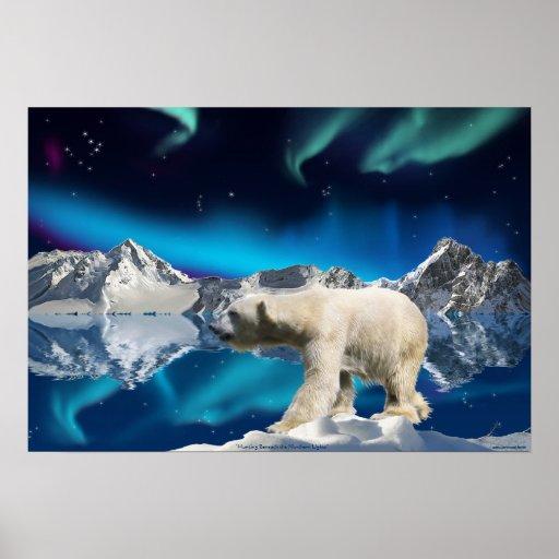 Polar Bear & Aurora Borealis 3 Wildlife Art Poster