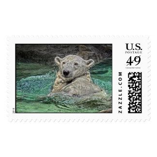 Polar Bear Back Stroke Postage Stamp