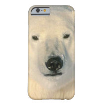 Polar Bear Barely There iPhone 6 Case