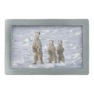 Polar bear belt buckle