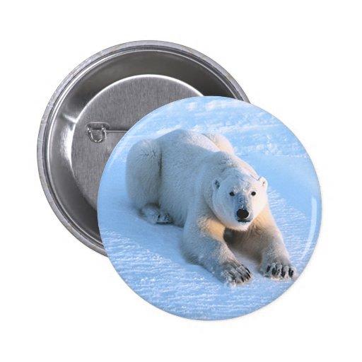 Polar Bear Blue Button