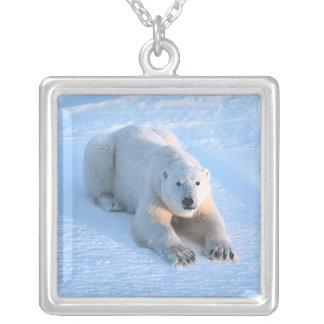 Polar Bear Blue Square Pendant Necklace