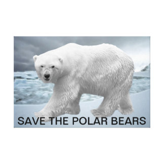 Polar Bear Stretched Canvas Print