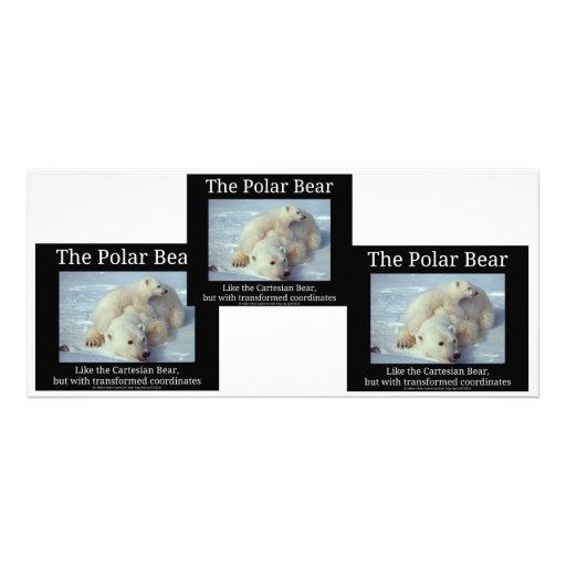 Polar Bear Cartesian Bear Full Color Rack Card