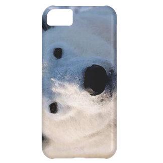 Polar Bear Cover For iPhone 5C