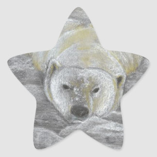Polar Bear Chalk Drawing Star Sticker