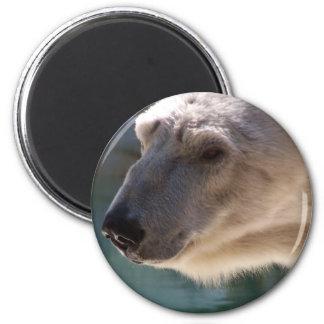 Polar Bear Close Up Portrait 2 Inch Round Magnet