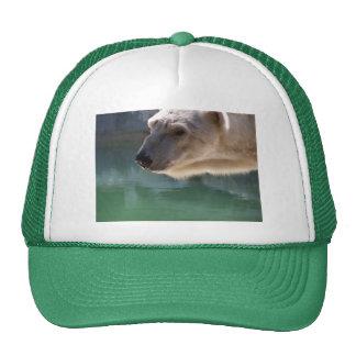 Polar Bear Close Up Portrait Trucker Hat