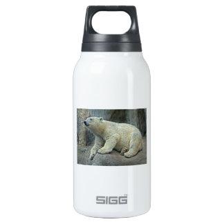 Polar Bear Cub #1 Insulated Water Bottle